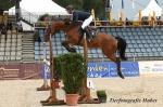 Hofgut - Pferde in Topform